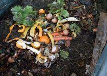Uso del compost en agricultura