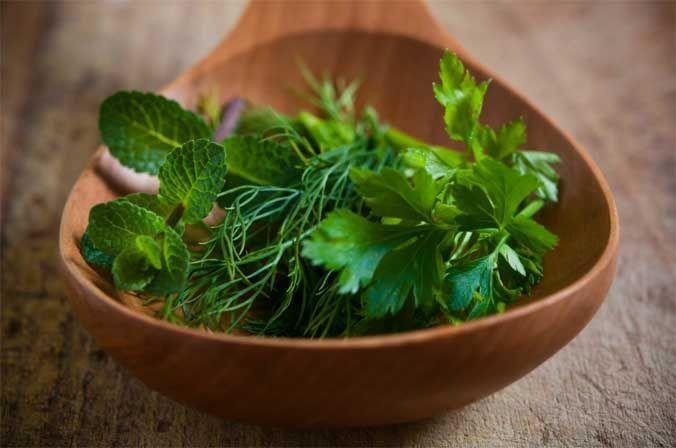 Cuchara con plantas medicinales