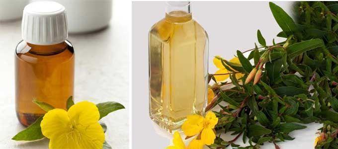 resultados y propiedades del aceite de onagra