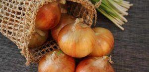 Efectos y propiedades de la cebolla