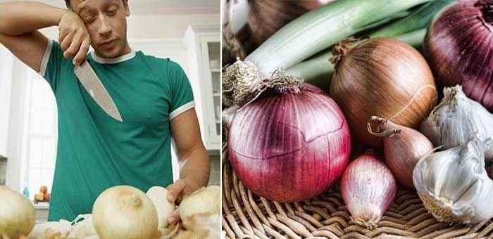 propiedades de la cebola y fitoquímicos