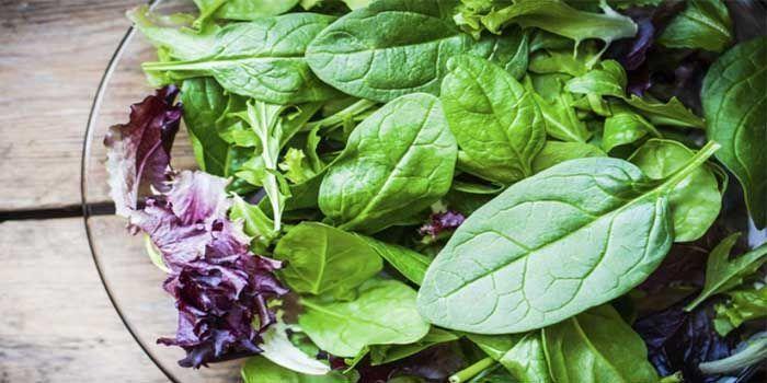 verduras y alimentos con más ácido fólico