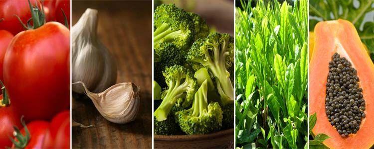 Plantas medicinales con acción antioxidante
