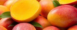 Frutas de mango maduras