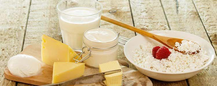 Productos lácteos y caseína