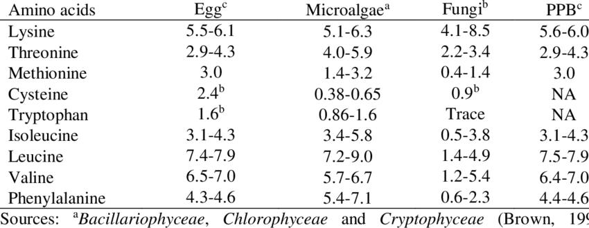 Aminoácidos presentes en el huevo