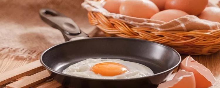Función de la proteínas del huevo
