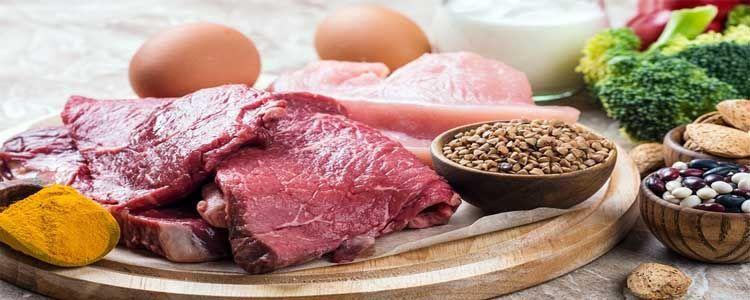 Proteínas animales y vegetales