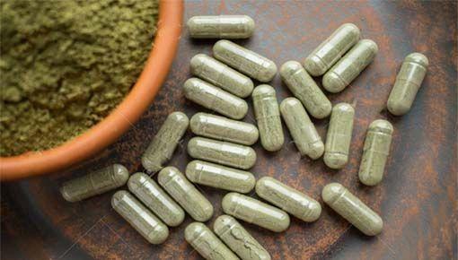 Efecto de plantas medicinales