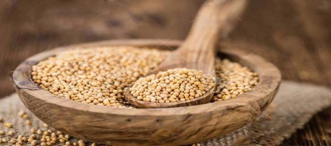 Propiedades granos de mostaza