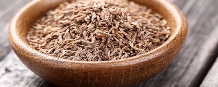 semillas alcaravea