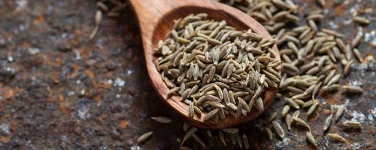 Usos medicinales de la alcaravea