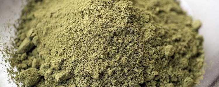 Beneficios de la proteína de cáñamo