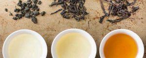 Propiedades del té Oolong