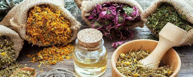 Usos y beneficios de los herbolarios