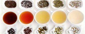 variedades de infusiones