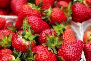 Propiedades de la fresa