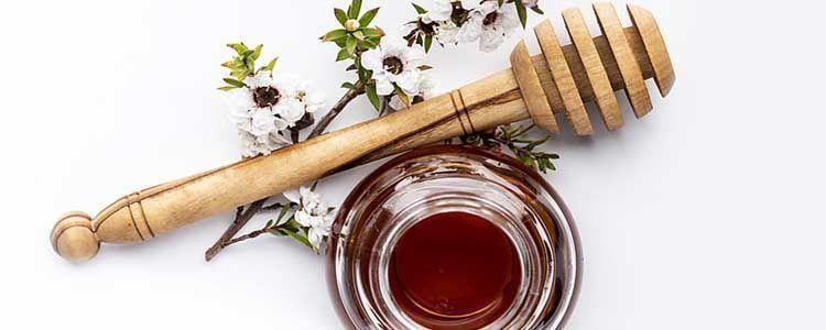 Propiedades de la miel de manuka
