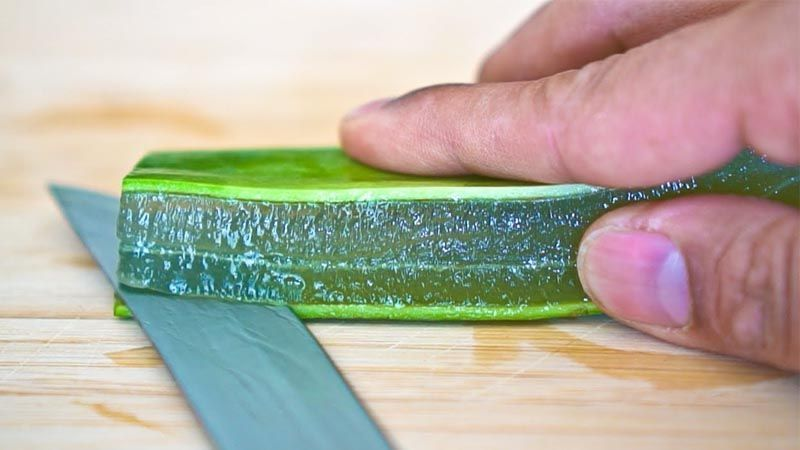 Preparar gel de Aloe vera